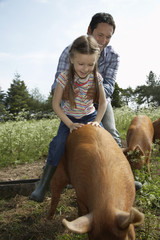 Father helping daughter 5-6 to ride pig in sty