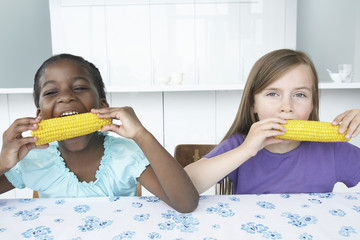 Two girls 5-6 sitting at table, eating corn cobbs