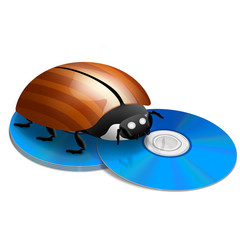 DVD/Blu-Ray Bug