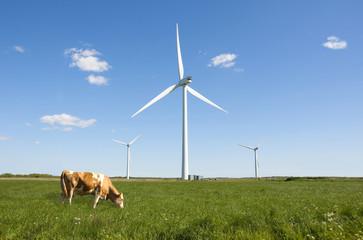 Wind turbine clean green energy