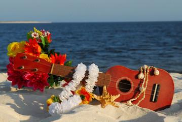 Ukulele on beach