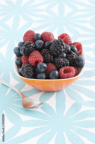 Spoon and bowl of forest fruits