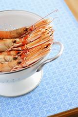 Shrimps in colander, elevated view