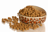 bowl of dog kibble in a heart shaped dog dish poster