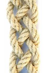 tresses de cordes