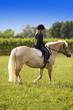 Bambina cavalca cavallo nello maneggio