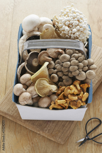 Assorted mushroom in basket on table, elevated view