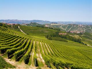 Piemonte le Langhe