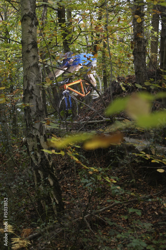 Mountain biker in woodland, view through trees