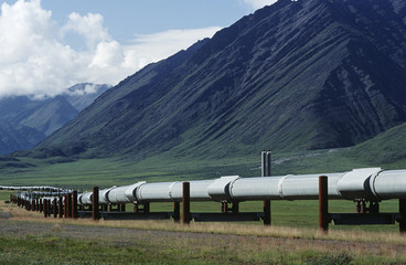 USA, Alaska, Dalton Highway pipeline in valley