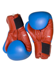 boxer's leather gloves on white background