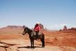 The Lone Horseman