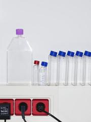 Row of specimen bottles on ledge