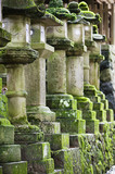 Japan, Mara, Row of stone lanterns in garden