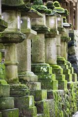 Japan, Mara, Row of stone lanterns in garden