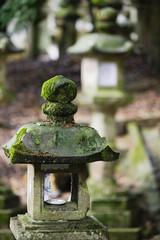 Japan, Mara, Stone lantern in garden