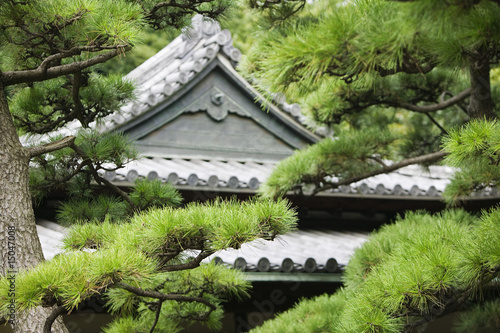 Japan, Tokyo, Tokyo Imperial Palace, Rooftop of Otemon East Gate seen through trees