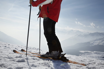 Skier in mountains, low section