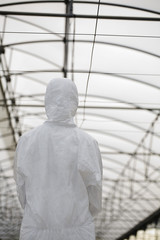 Worker in protective suit in greenhouse, back view