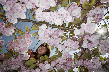 Woman in a Blossoming Cherry Tree
