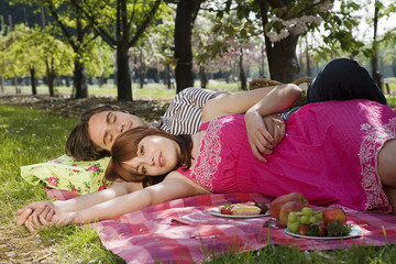 Young Couple Having a Picnic