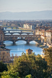 Panoramic view of Florence and Ponte Vecchio. poster