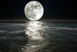 canvas print picture - moon