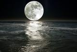 Fototapety moon