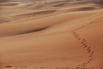 Passi nel deserto di Dubai