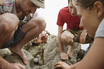 Young travelers looking at sea animal threw at a seashore