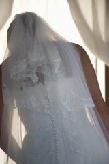 Back view of bride wearing veil