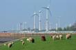 Leinwanddruck Bild - Windkraftanlagen an der küste