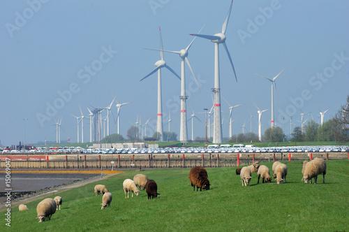 Leinwanddruck Bild Windkraftanlagen an der küste