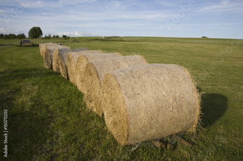 hay bales on green field