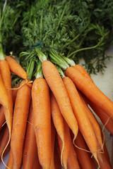 Bottes de carottes au marché