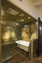 Luxury interior design, bathroom