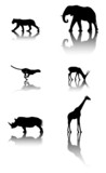 Set of wildlife animals poster