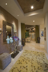 Luxurious residence interior