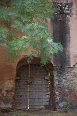 Rajasthan, India, door in wall