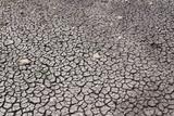 terreno arido poster