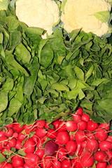 Blumenkohl, Radieschen, Kopfsalat, Marktstand