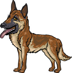 Dog Breeds: German Shepherd