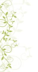 décor vectoriel vert sur fond blanc - nature