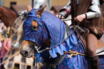 Medieval horse