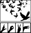 Peace dove love hand symbol silhouette