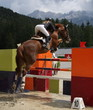 Beautiful lady jumping with her stud horse - 15163825