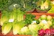 Markstand, Gemüse, Salate, Brokoli, Fenchel, Basilikum