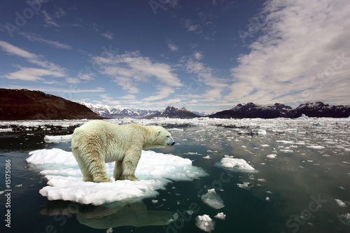 Tuinposter Ijsbeer Polar Bear and global warming