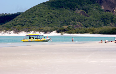 Whitsundays beach - 5