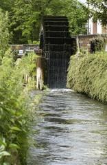Das Wasserrad einer Mühle